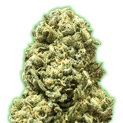 Monster Girl Scout Cookies