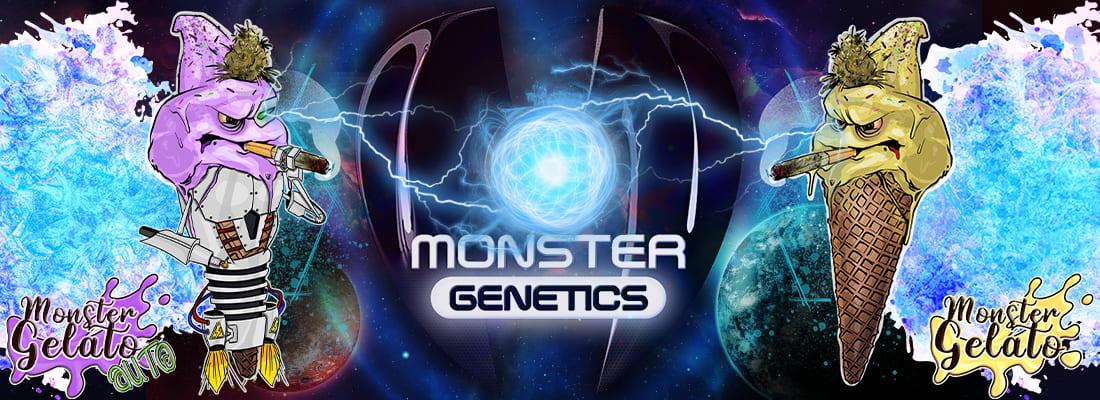 Monster Gelato Auto vs Monster Gelato