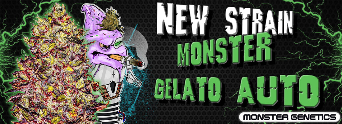 Monster Gelato Auto