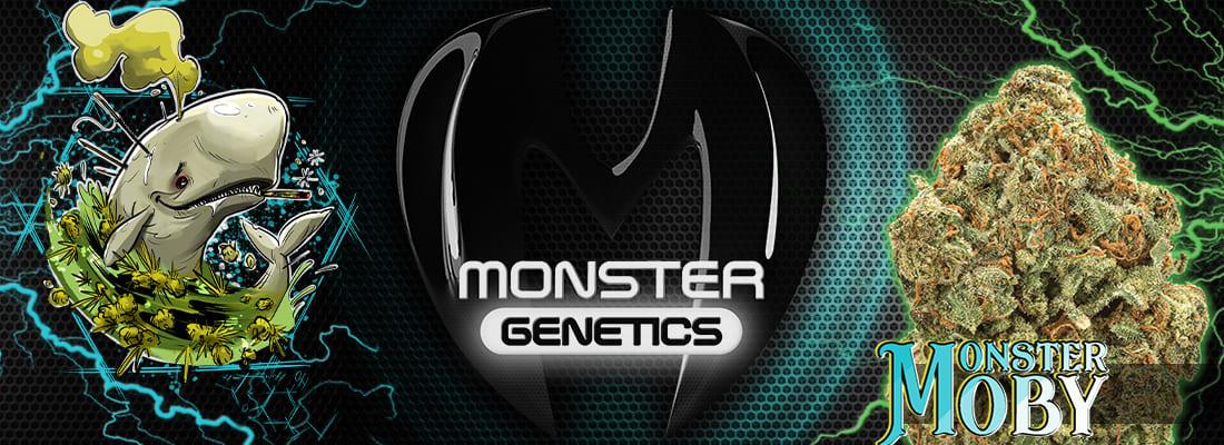 Monster Genetics Moby