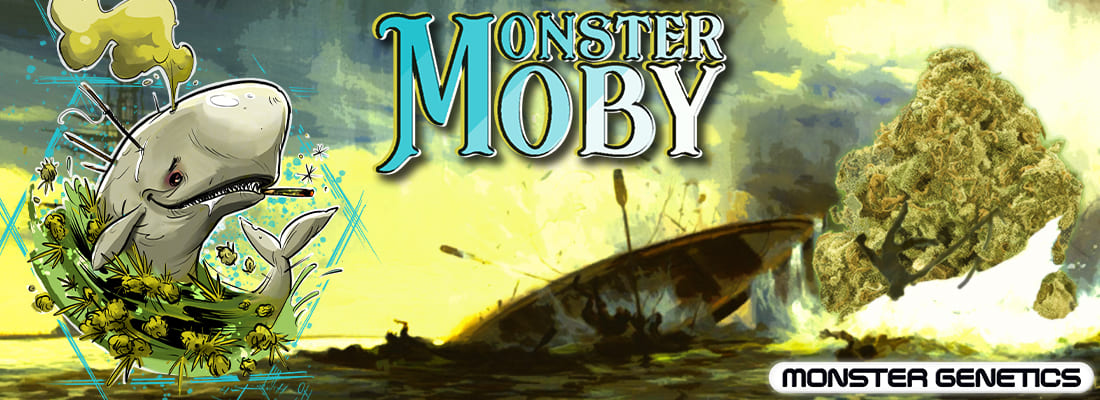 Monster Moby